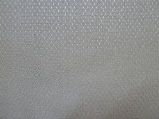 P1040801 OLEFIN Fabric