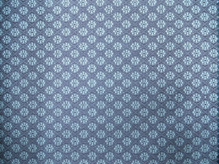 P1140575 OLEFIN Fabric
